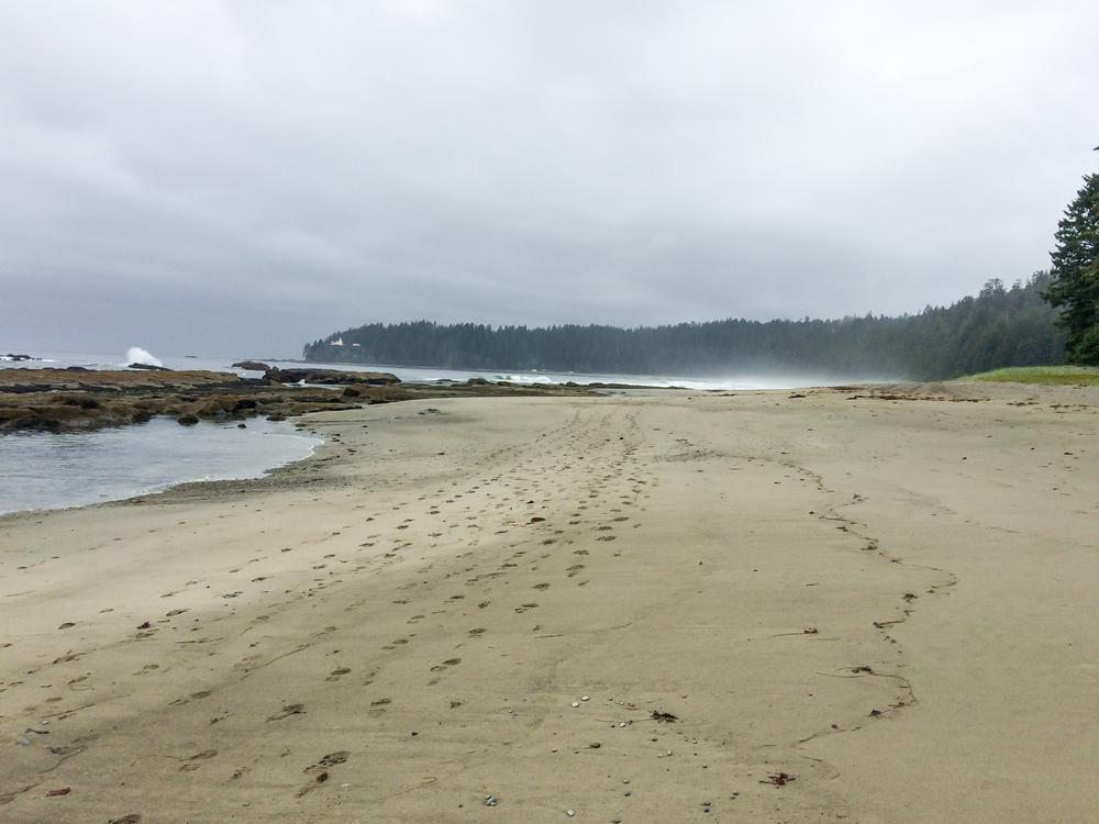West Coast Trail (17 of 30).jpg