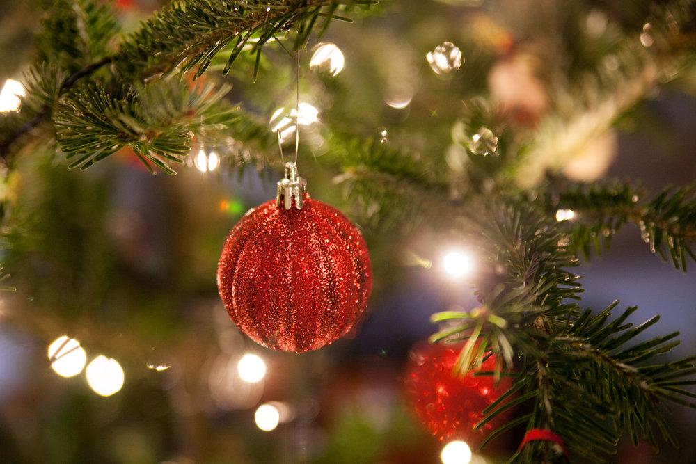 Christmas Tree Extravaganza 2016 (5 of 9).jpg
