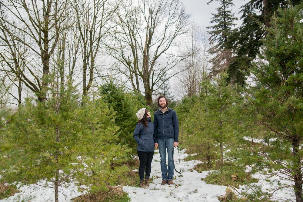 Christmas Tree Extravaganza 2016 (17 of 55).jpg