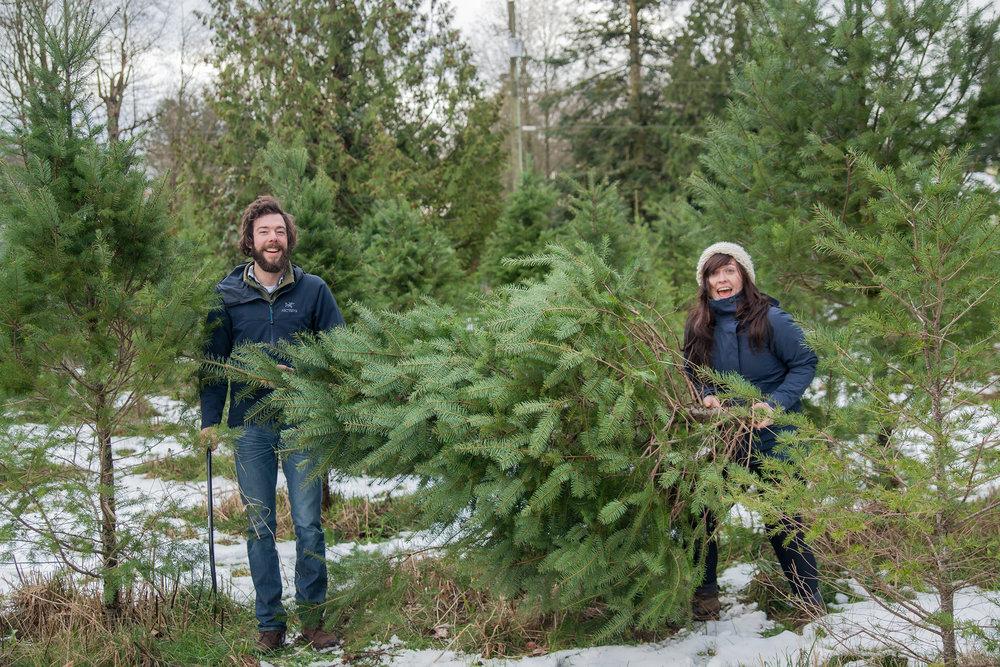 Christmas Tree Extravaganza 2016 (40 of 55).jpg