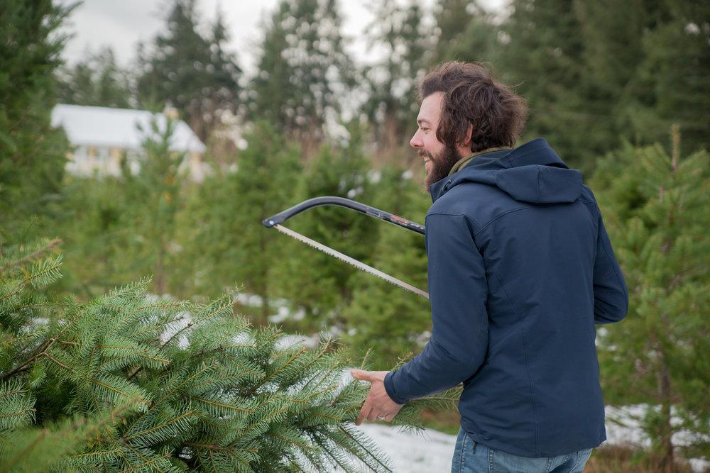Christmas Tree Extravaganza 2016 (41 of 55).jpg