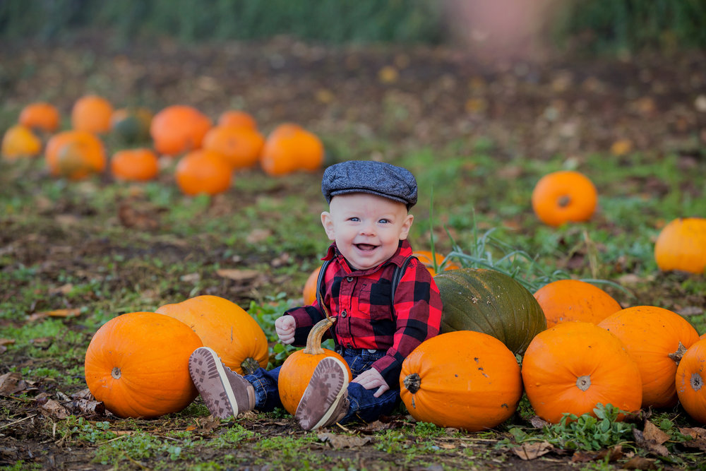 Pumpkin Patch - October 2017 - WT (17 of 119).jpg