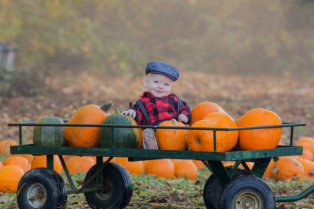 Pumpkin Patch - October 2017 - WT (32 of 119).jpg