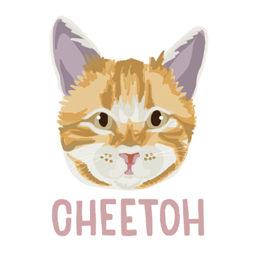 Cheetoh_forWEB.jpg