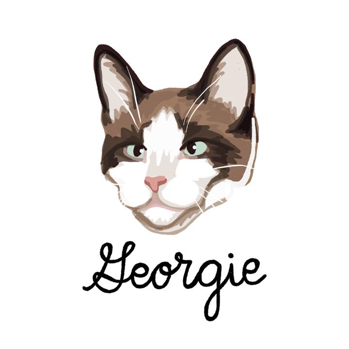 Georgie_forWEB.jpg