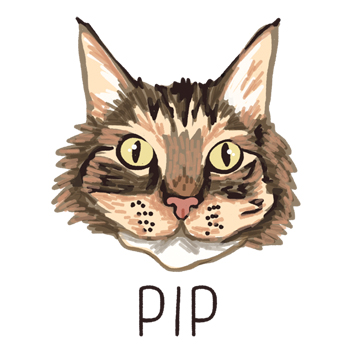 Pip_forWEB.jpg