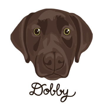 Dobby_forWEB.jpg