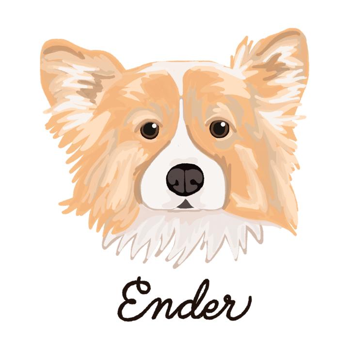 Ender_forWEB.jpg