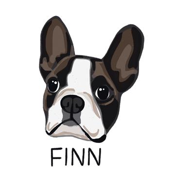 Finn_forWEB.jpg
