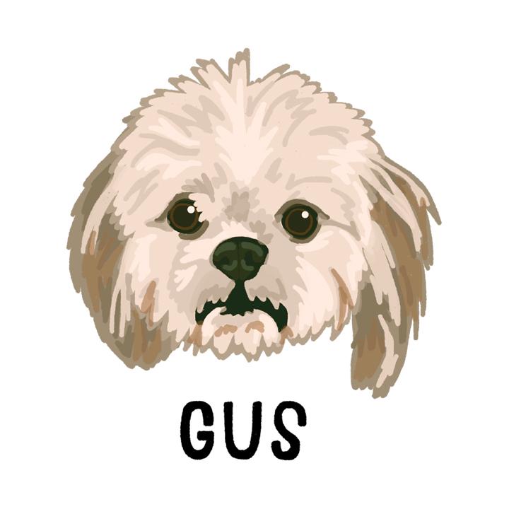 Gus2_forWEB.jpg
