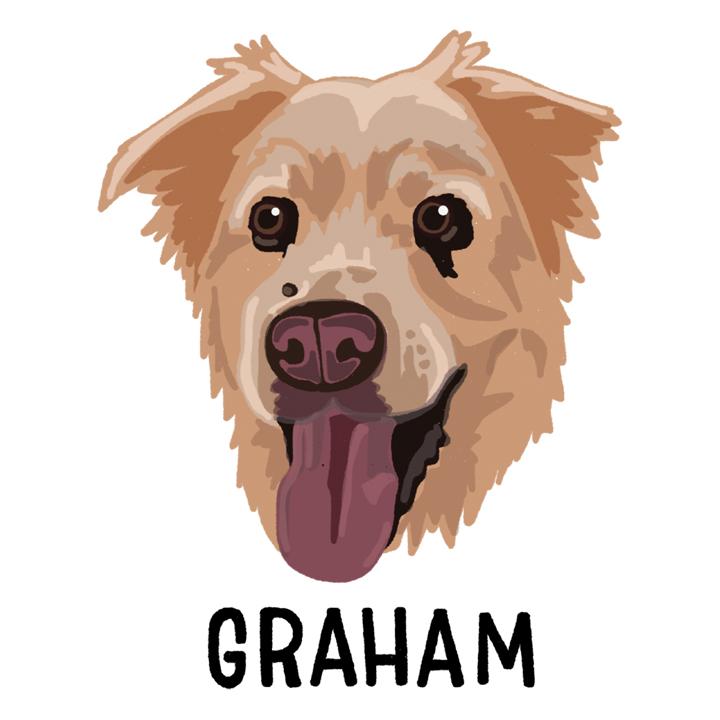 Graham_forWEB.jpg