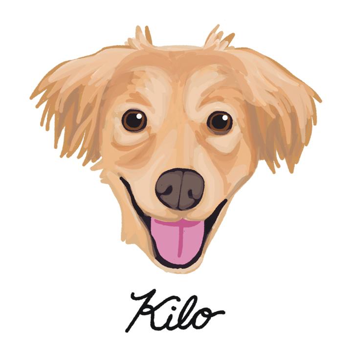 Kilo2_forWEB.jpg