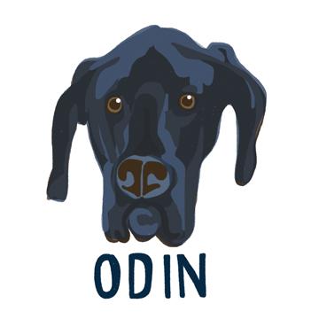 Odin_forWEB.jpg