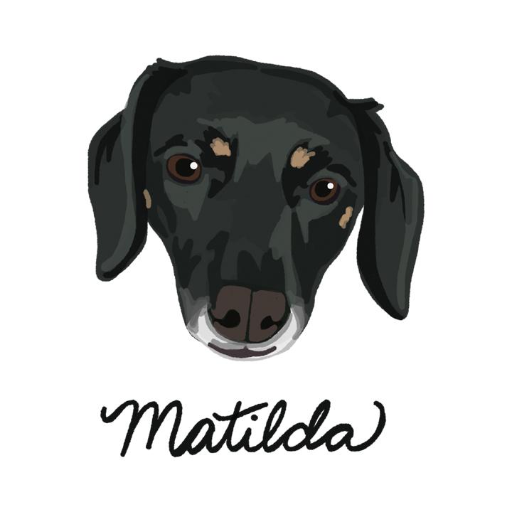Matilda2_forWEB.jpg