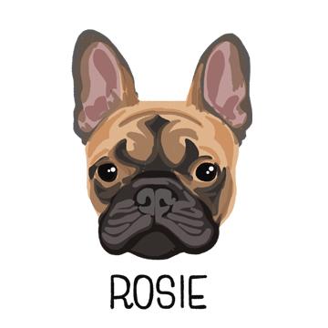 Rosie_forWEB.jpg