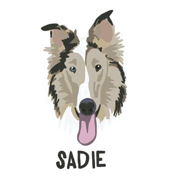Sadie_forWEB.jpg