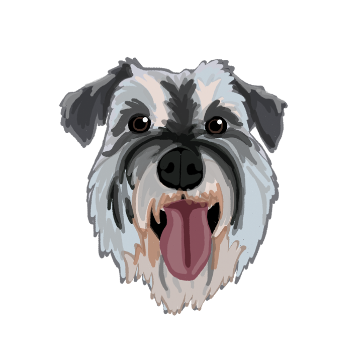 Schnauzer2_forWEB.png
