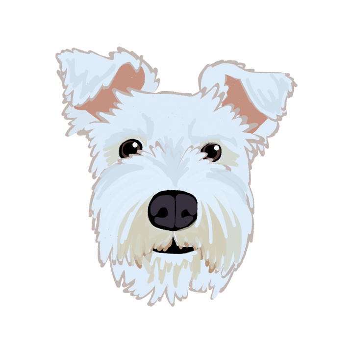 Schnauzer1_forWEB.png