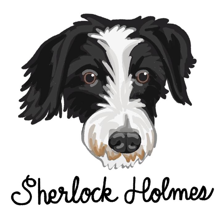 Sherlock_forWEB.jpg