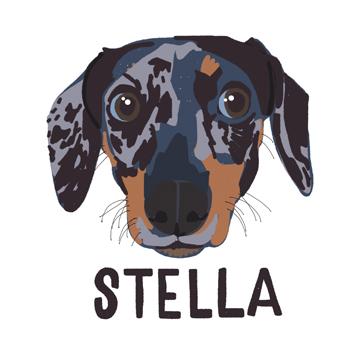 Stella_forWEB.jpg