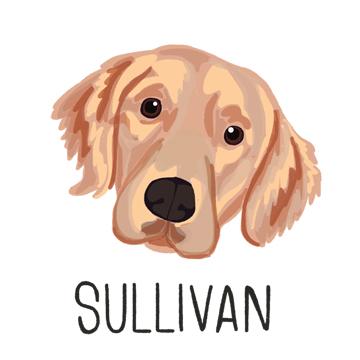 Sullivan_forWEB.jpg