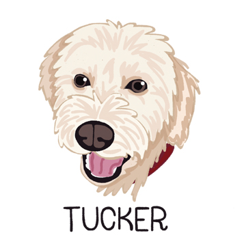 Tucker_forWEB.jpg