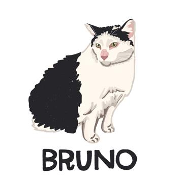 Bruno_forWEB.jpg