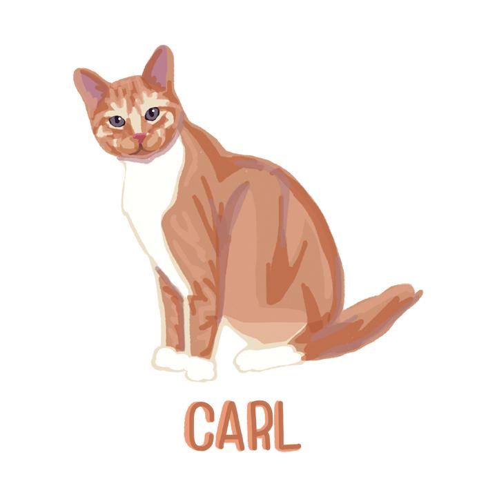 Carl2_forWEB.jpg