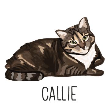 Callie_forWEB.jpg