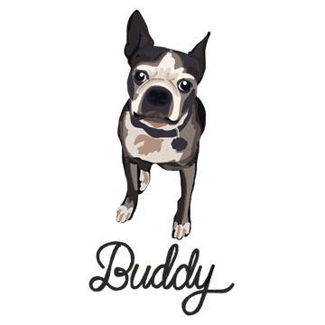 Buddy_forWEB.jpg
