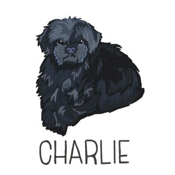 Charlie_forWEB copy.jpg