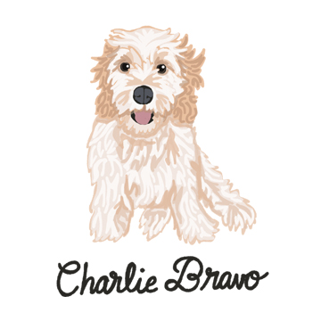 CharlieBravo_forWEB.jpg