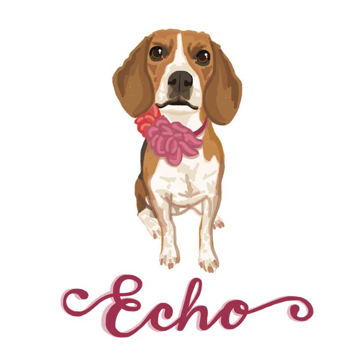 Echo_FullPortrait_forWEB.jpg