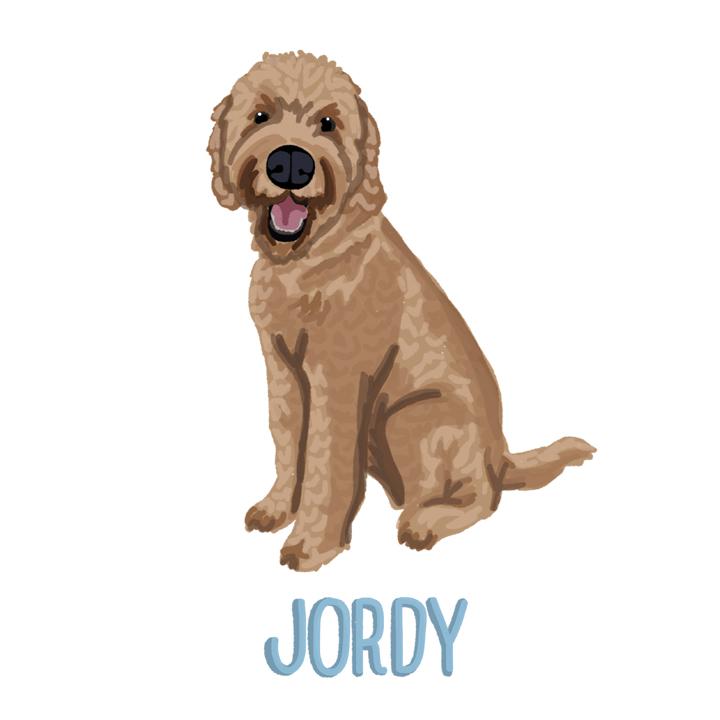 Jordy2_forWEB.jpg