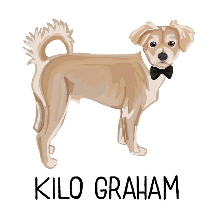 KiloGraham2_forWEB.jpg
