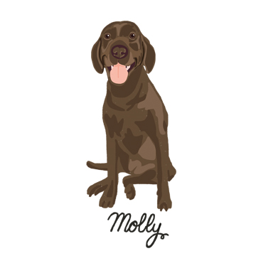 Molly2_forWEB.jpg