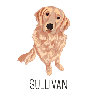 Sullivan2_forWEB.jpg