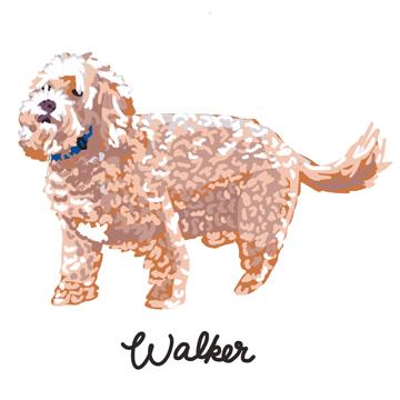 Walker_forWEB.jpg
