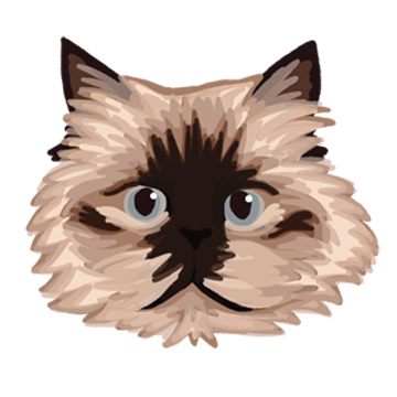 Cat_forWEB.jpg