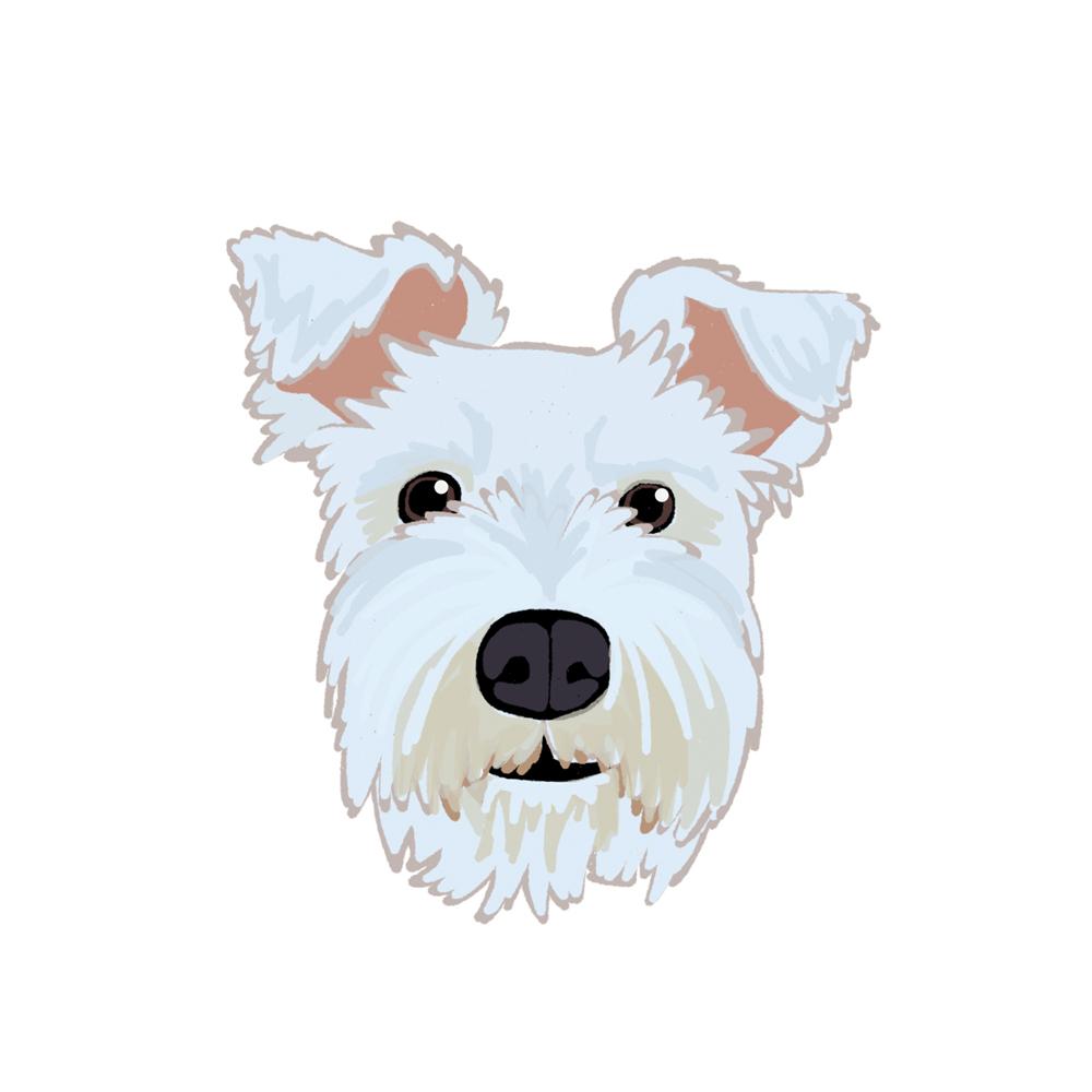 DogPortrait2.jpg