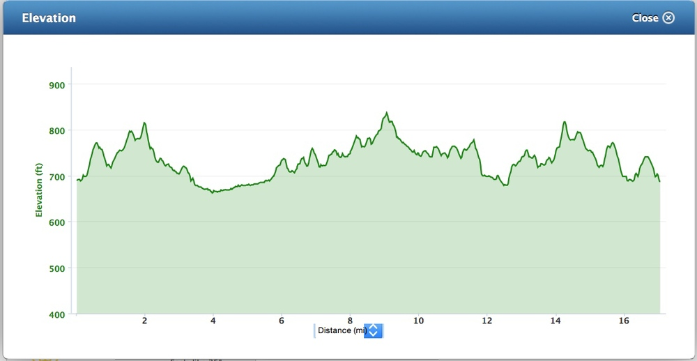All of It - 17 Mile Run Elevation Map