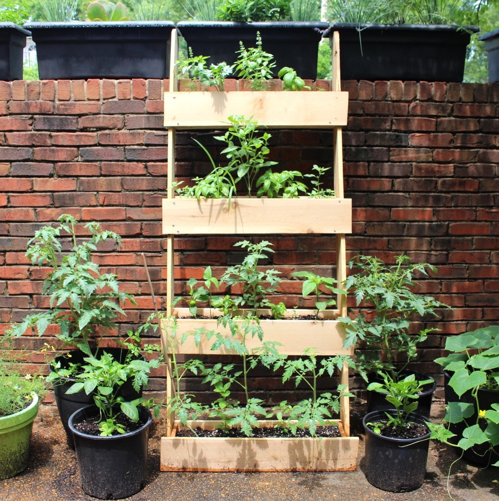 Garden Planter Ladder - June 24 .jpg