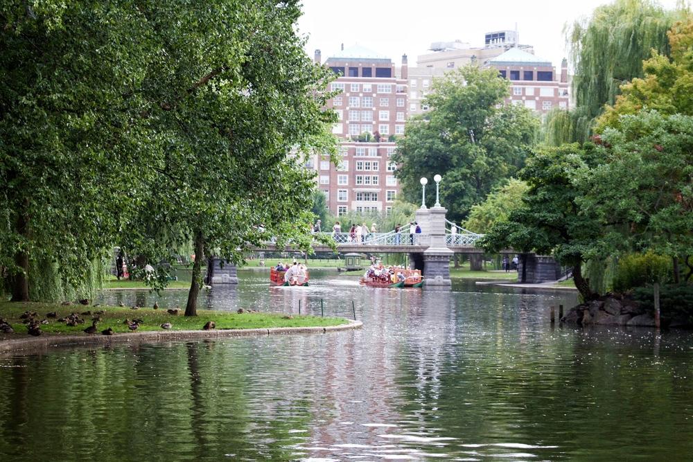 All of It - Boston Common