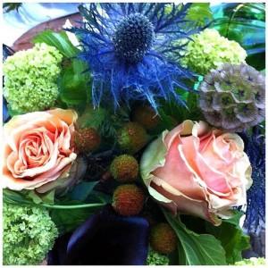 Belle-Star-Floral