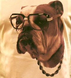 heavens-devilz-brooklyn-bulldog