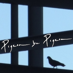 PigeonBePigeon.jpg
