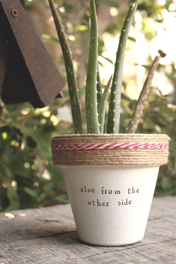 Plant Puns