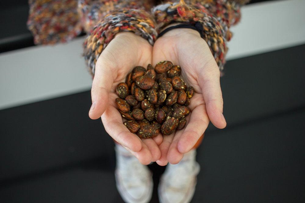 Spice-Foods-Almonds-Detroit-Entrepreneurship.jpg