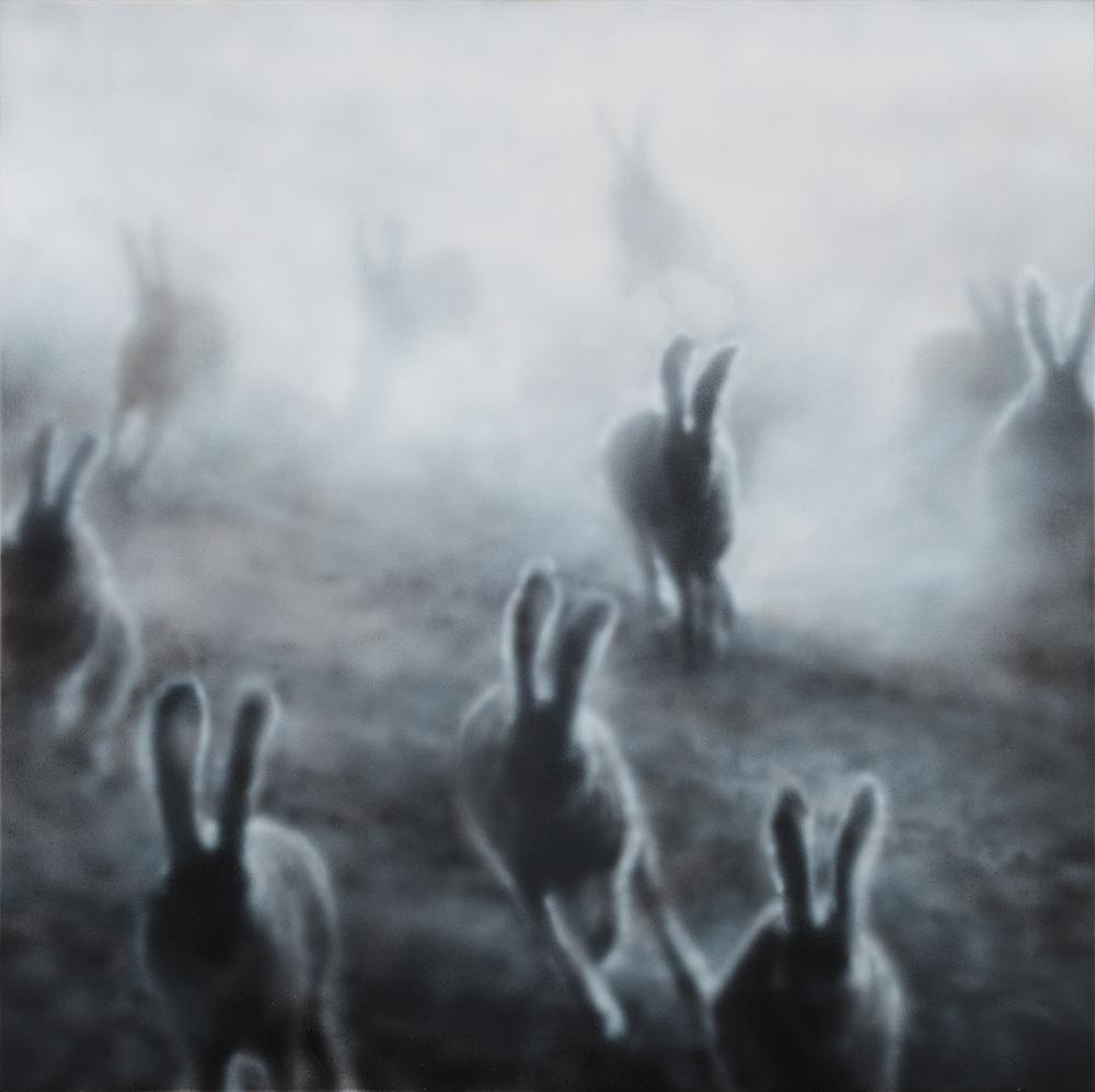 """""""Dust Bunnies"""" (2)"""