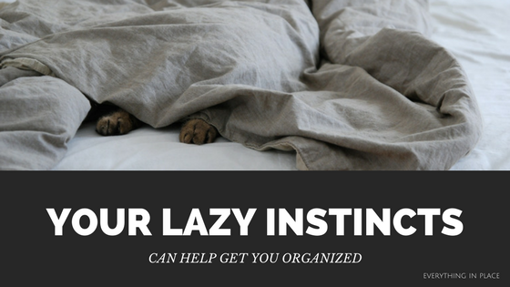 get organized by being lazy